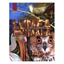 Lumea animala a Moldovei. Vol. 3. Pasari - Andrei Munteanu