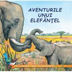 Aventurile unui elefantel - Sa cunoastem lumea inconjuratoare!