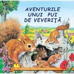 Aventurile unui pui de veverita