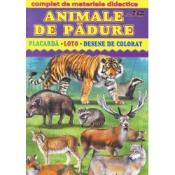 Animale de padure - Placarda, Loto, Desene de colorat