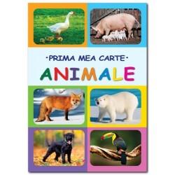 Animale. Prima mea carte