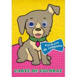 Animale de companie (cu ochisori) - Carte de colorat